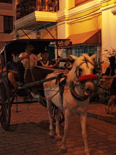 A calesa (horse-drawn carriage) on Calle Crisologo, Vigan
