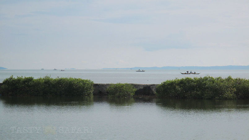 Guimaras Strait viewed from Palmas del Mar, Bacolod City