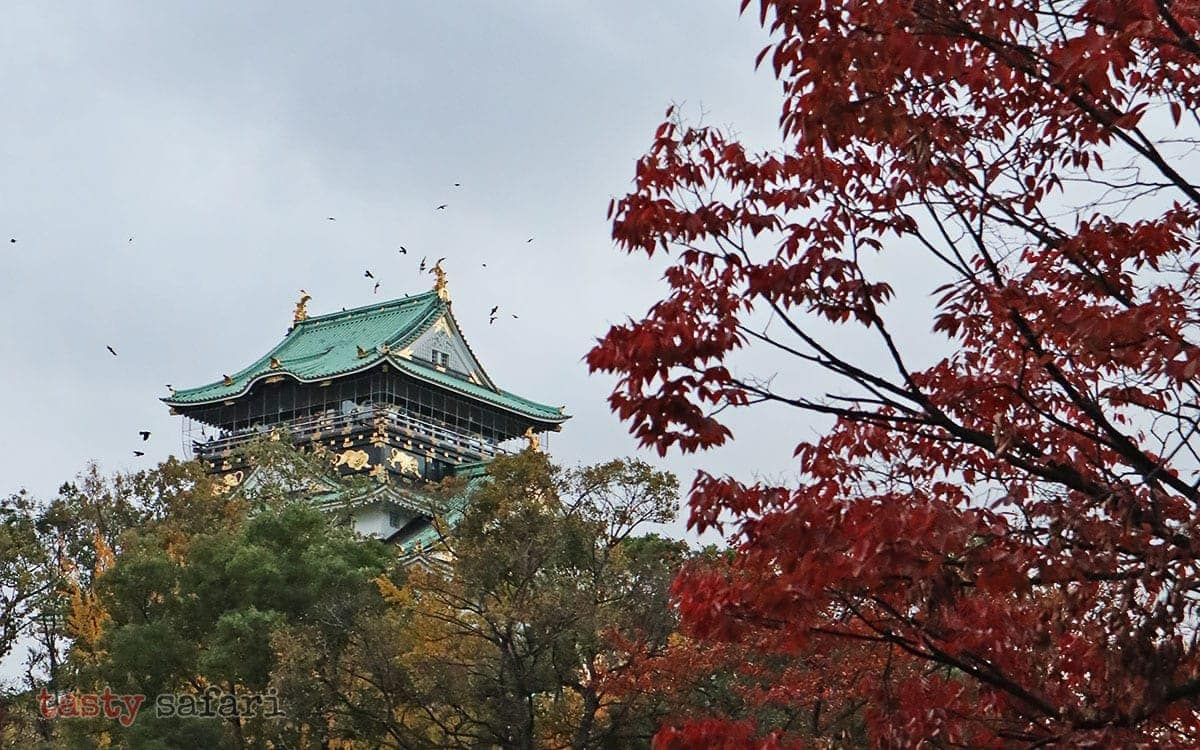 Crows flying over Osaka Castle