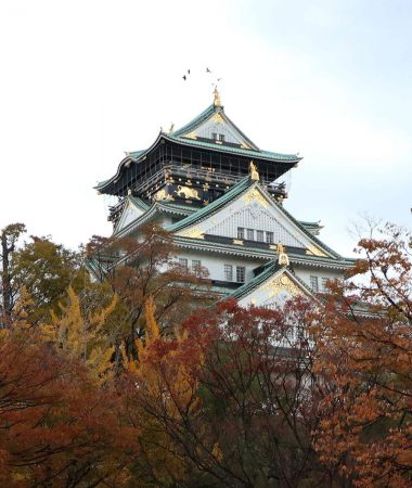 Osaka Castle in the fall