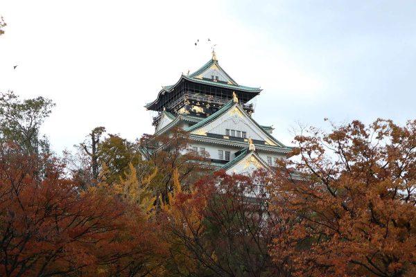 Osaka Castle in the fall