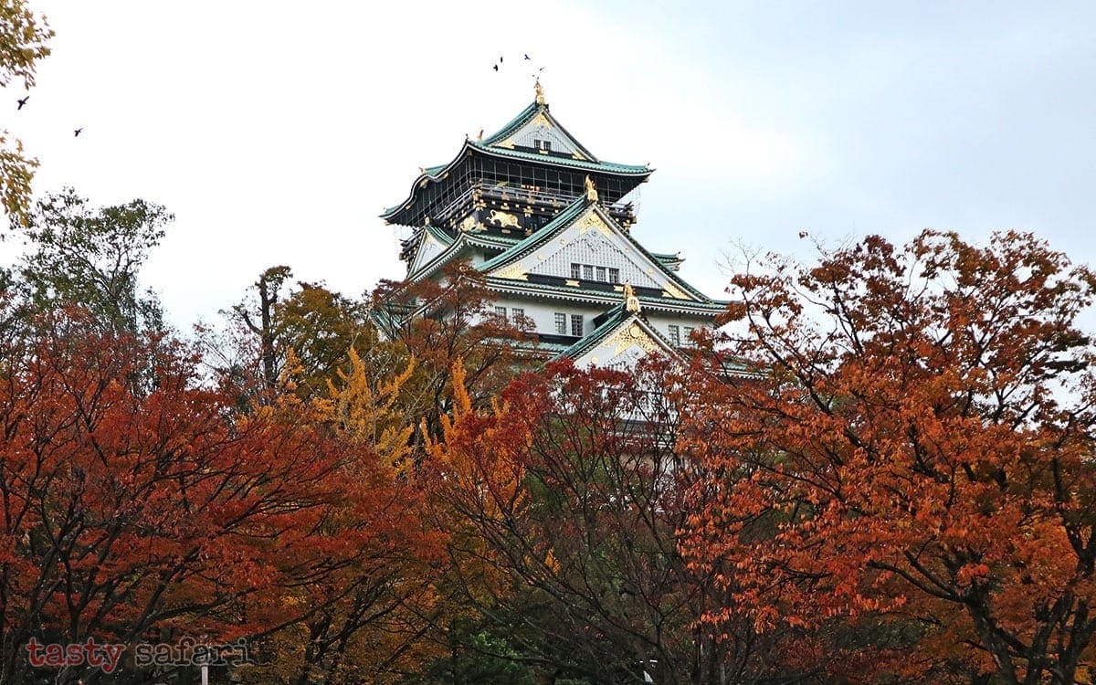 Osaka Castle and autumn leaves