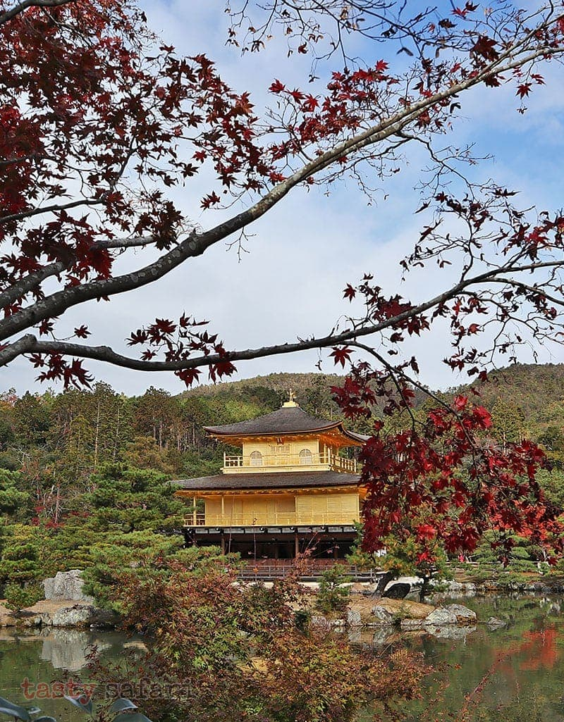 Kinkaku-ji (Temple of the Golden Pavilion) in Kyoto