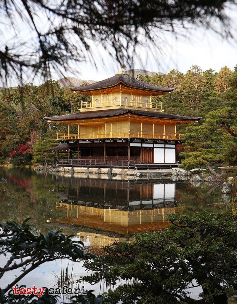 The Golden Pavilion and its reflection on the water around it. Kyoto, Japan