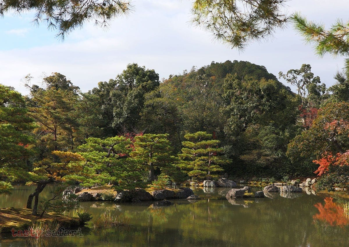 The pond in the garden of the Golden Pavilion. Kyoto, Japan