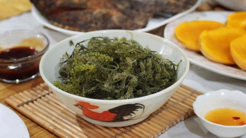 Umibudo (sea grapes), an edible seaweed consumed in Japan