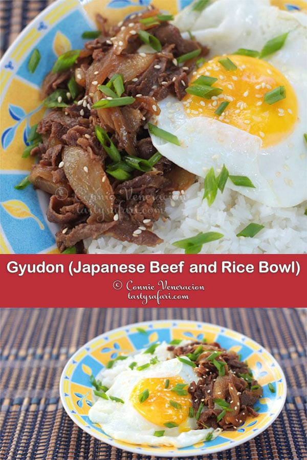 How to Cook Gyudon (Japanese Beef and Rice Bowl)