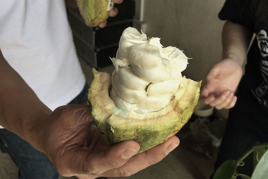 The flesh of cacao fruit