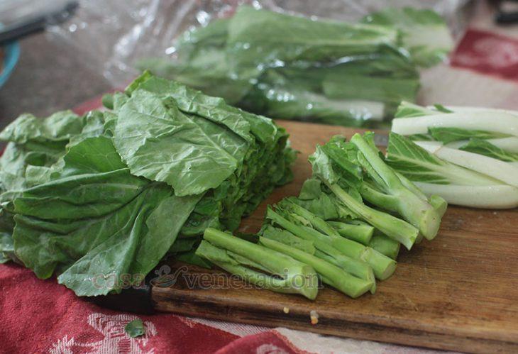 Chinese Broccoli (kai-lan or Gai Lan) is a variety of kale