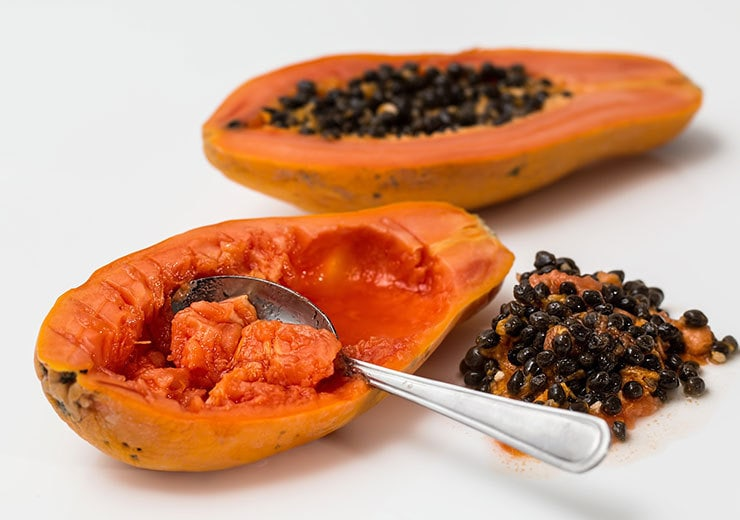 Papaya for tenderizing meat