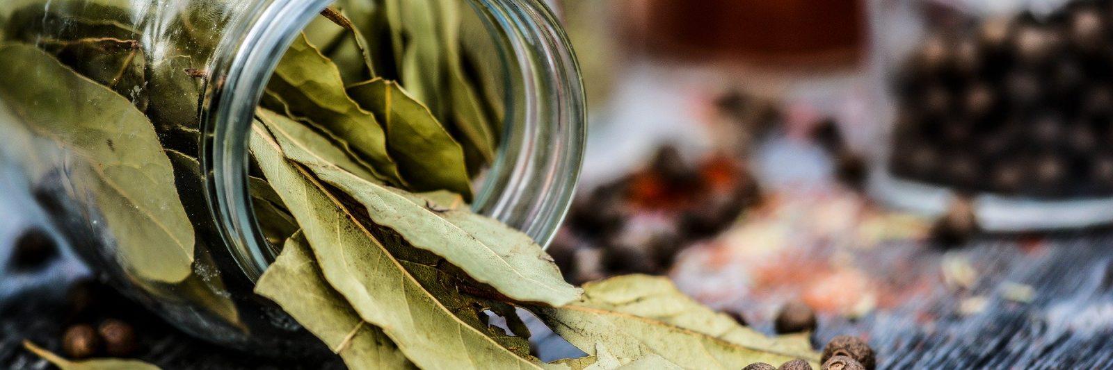 Bay leaves (Laurel)