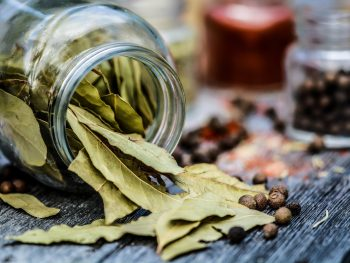 Bay leaves (Laurel)