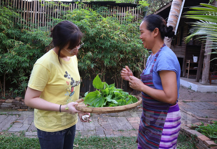 Herb and vegetable garden at a cooking school in Chiang Mai