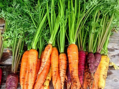 Carrots with leafy tops