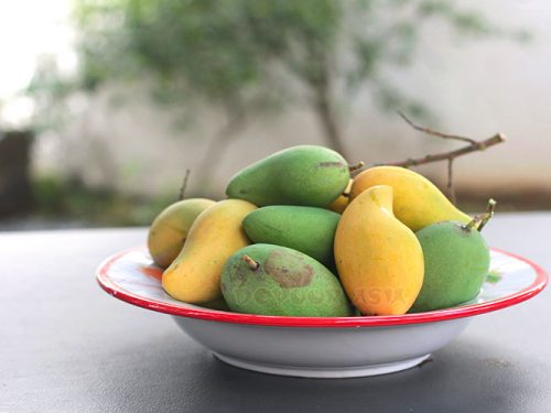 Yellow and green mangoes in a large shallow bowl