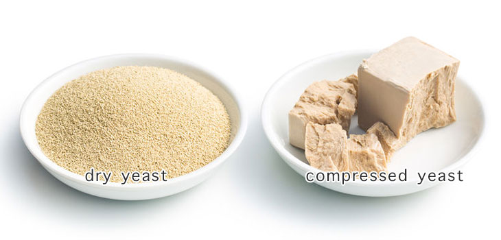 dry yeast and compressed yeast