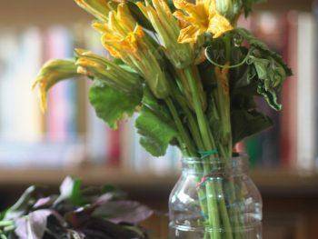 Squash Blossoms (Bulaklak ng Calabasa)