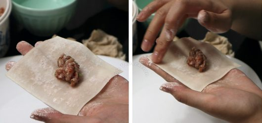 How to fill wonton skin