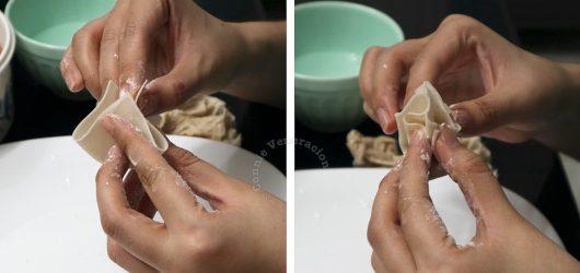 How to seal wonton skin
