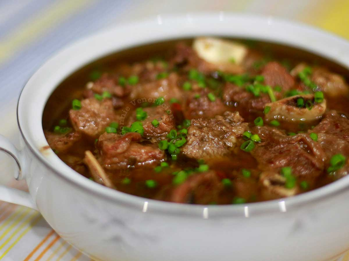 Chinese-inspired beef stew garnished with scallions